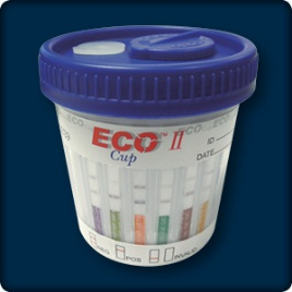 Eco-II-up